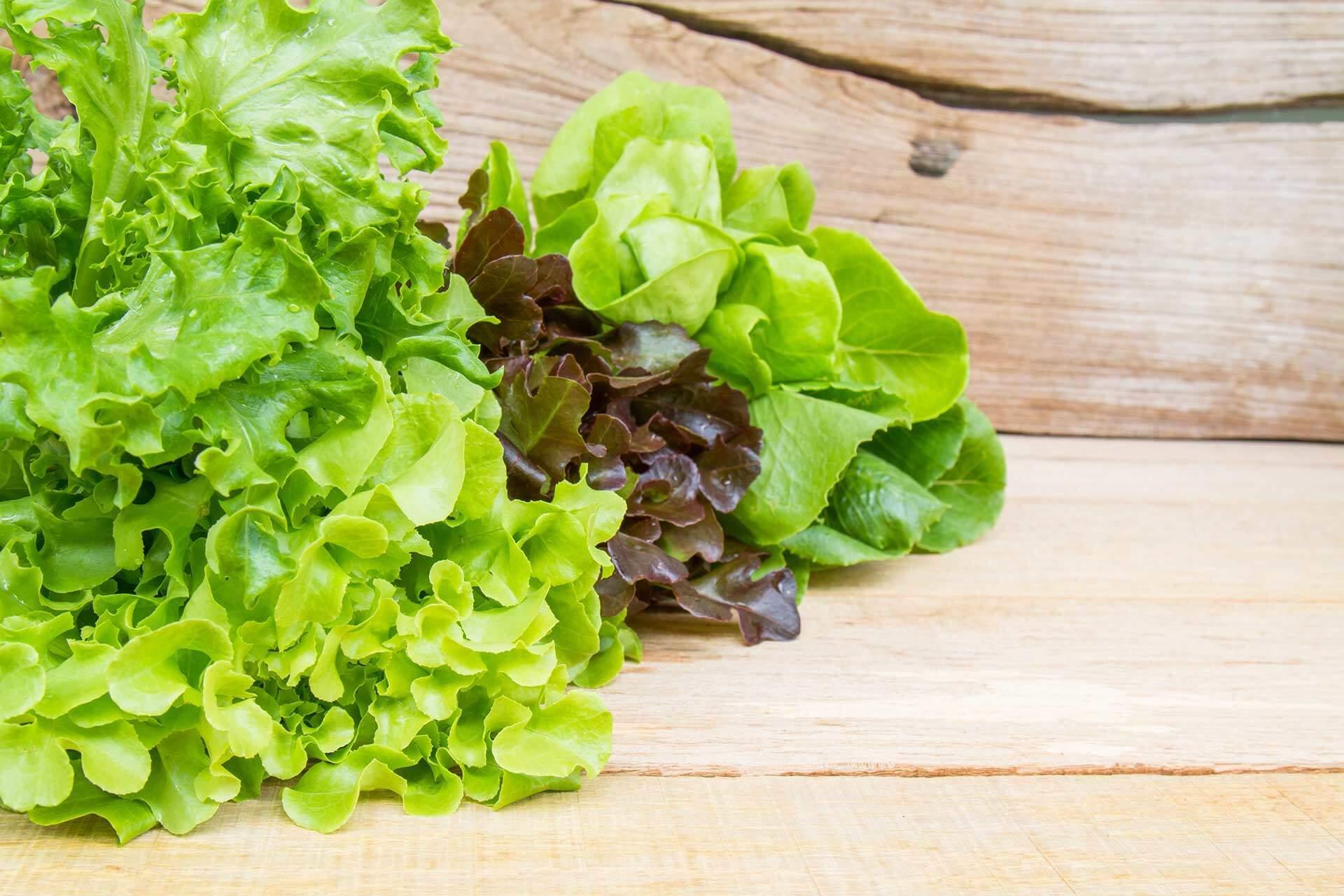 Zelena salata koliko je zdrava