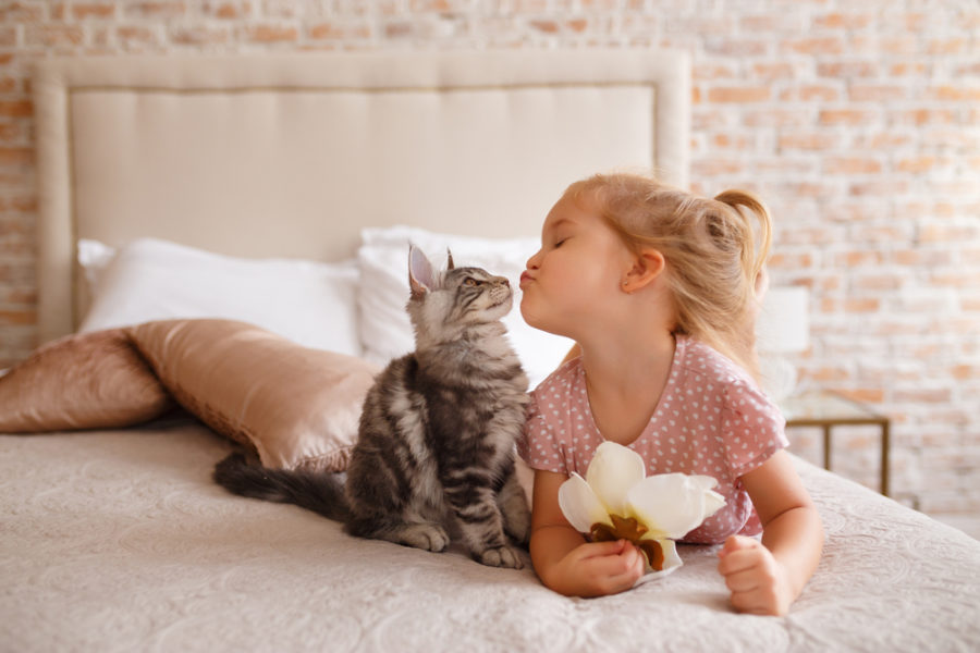Girl with cat e1521743518363