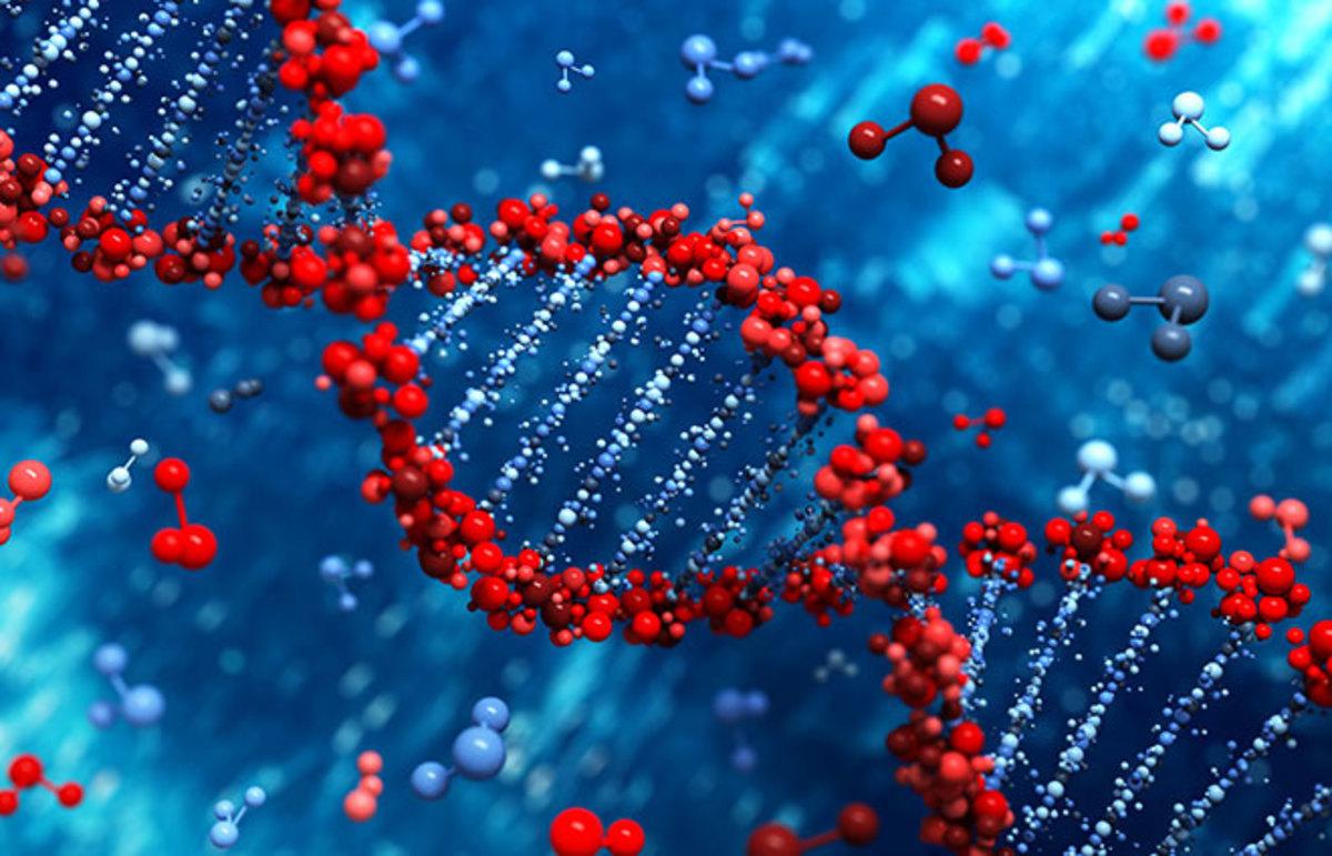 dna gene obsolete 1