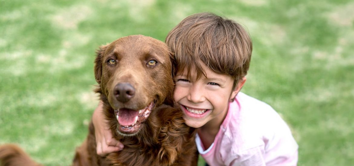 life with pets blog feature kids and pets safety rules 011915