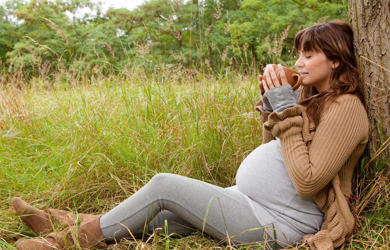 pregnancy herbal teas