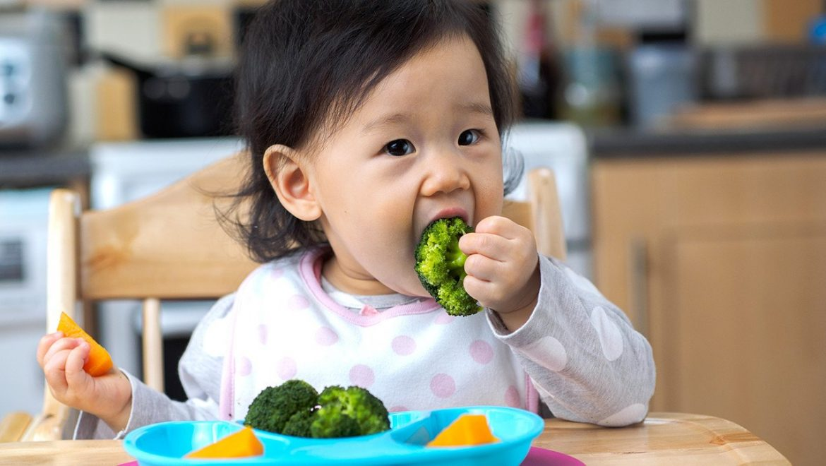 12 month old meal plan shutterstock 611210294